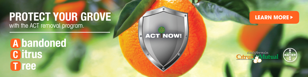 Protect your citrus grove with the ACT removal program